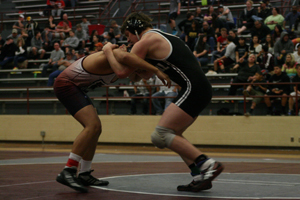 Wrestlers place at state competition