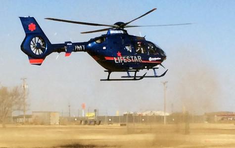 Lifestar lands at RHS