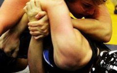 Lady Raider wrestling wins second at state duels tournament
