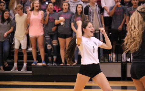 Battle of Bell: Volleyball sweeps Amarillo High