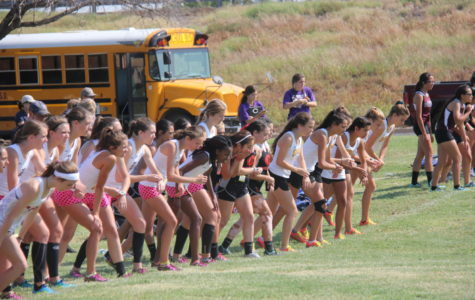 State bound: Cross country teams to compete for title Saturday