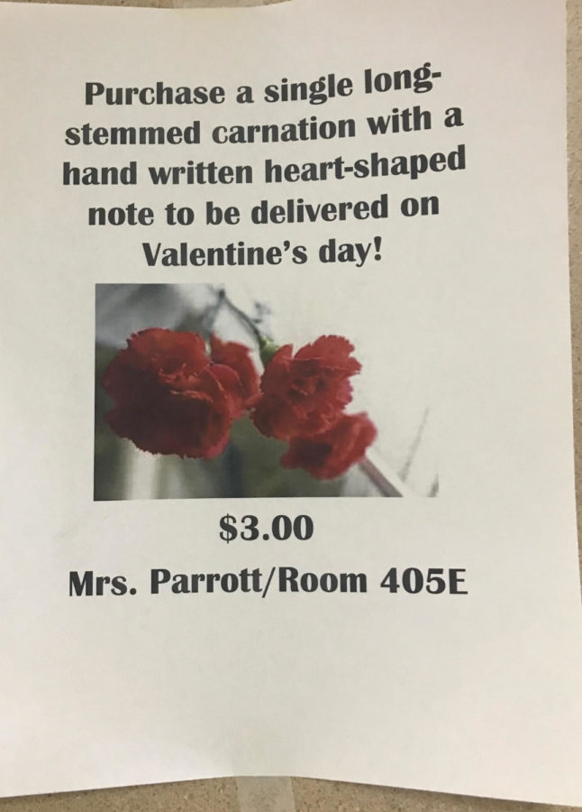 Say it With a Flower: Carnations to be sold in 405 east