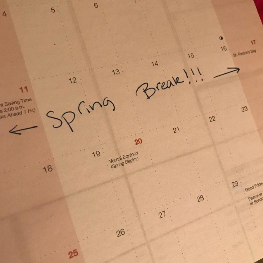 Its Time for Spring Break