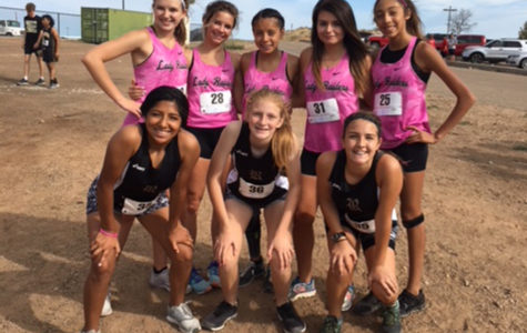Cross Country Teams to Compete this Saturday