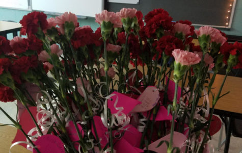 Floral Design to Sell Carnations for Valentine's Day