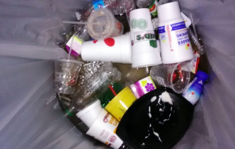 The Great Plastic Debate Continues