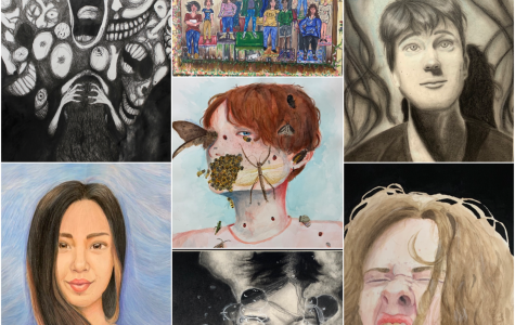 Raiders Win State Medals In VASE Art Competition